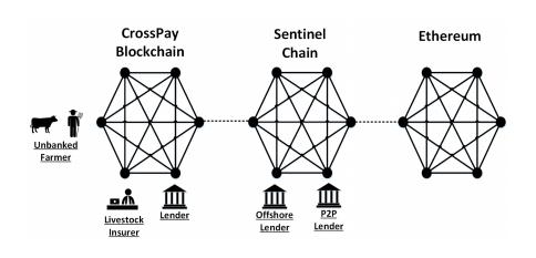 Sentinel Chain ICO Ecosystem Diagram