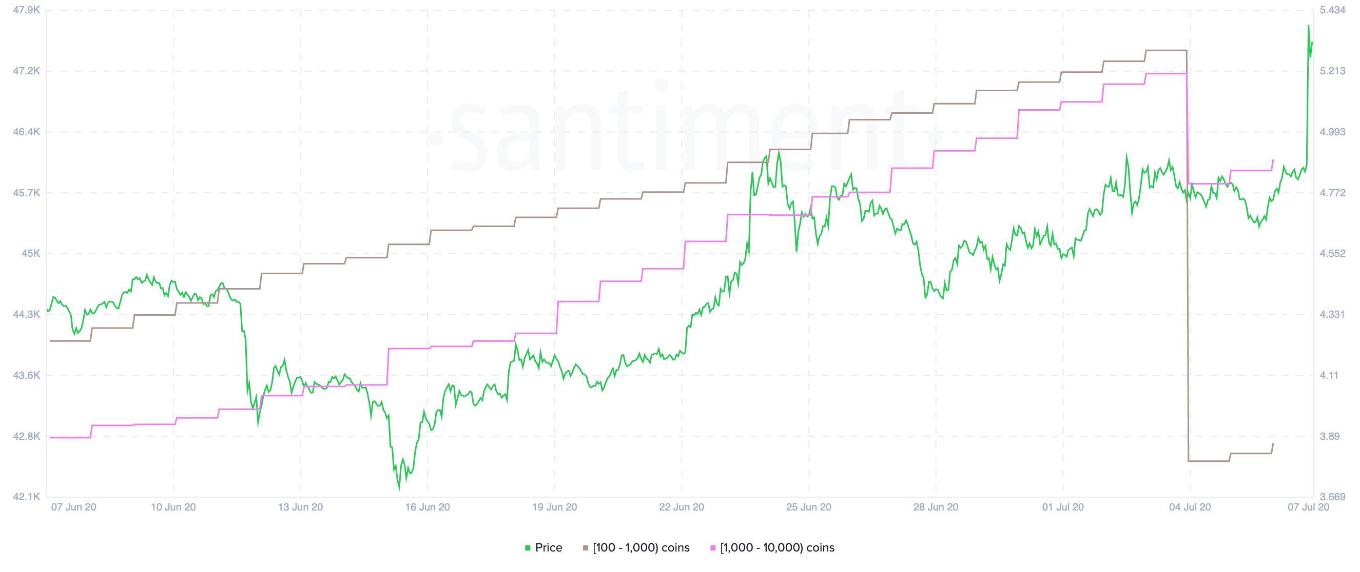 Chainlink Holder Distribution by Santiment