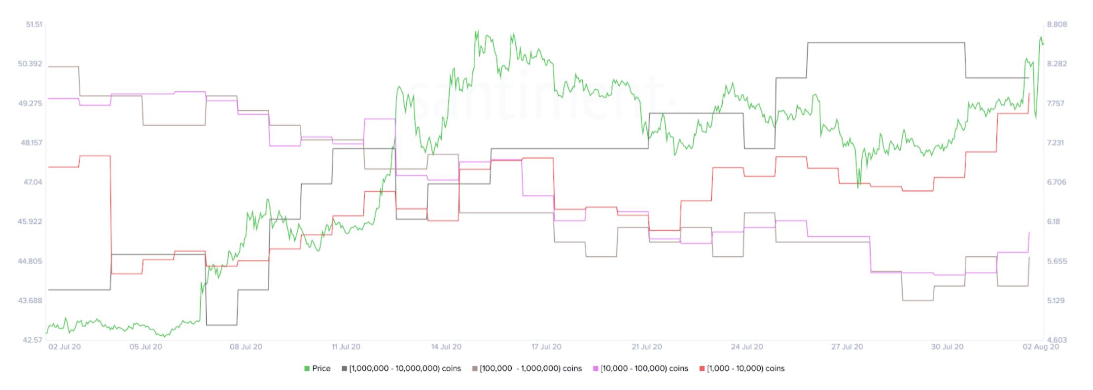 LINK Holder Distribution by Santiment