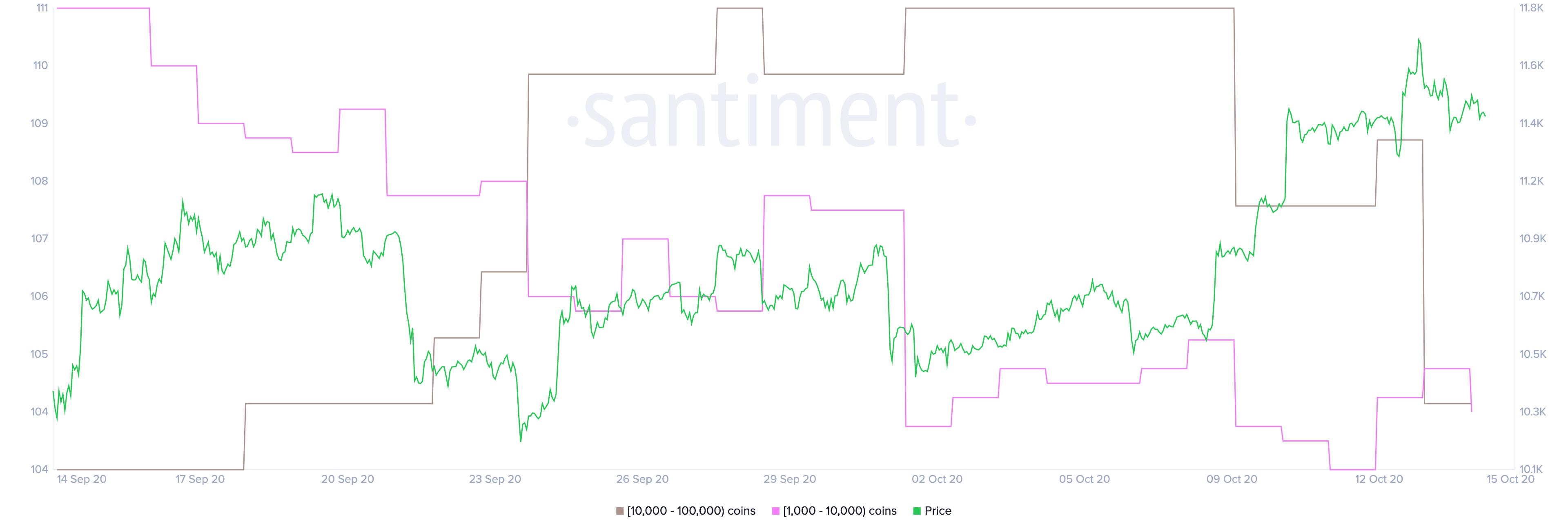 BTC holder distribution by Santiment