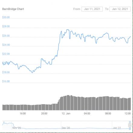BarnBridge (BOND) Price Action