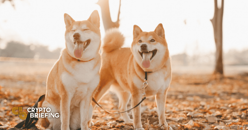Gemini Lists Dogecoin, Sending Price to New Highs