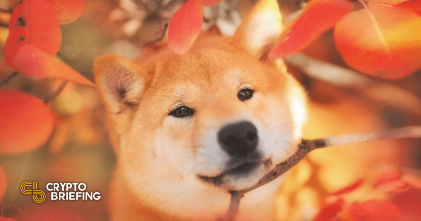 American Cancer Society Accepts Dogecoin Donations thumbnail
