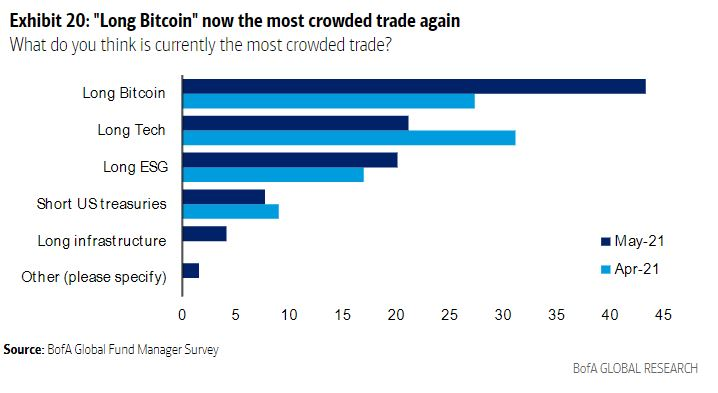 """Long Bitcoin is World's """"Most Crowded Trade"""": Bank of America Survey 